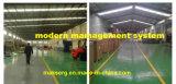 Tür-Hebelgriff-Fabrik-Hersteller-Edelstahl Soem China-LED helles