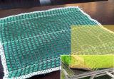 Geotêxtil da nutrição para projetos da esteira da paisagem para o Riverbank e o rio