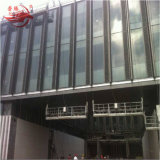 Zlp800n Steel Gondola di Construction Manufacturer