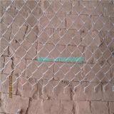 いろいろな種類の平和な農産物チェーン・リンクの塀