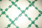 塀/アコーディオン式のかみそりの有刺鉄線のためのエレクトロによって電流を通されるかみそりの有刺鉄線