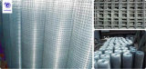 Elettro Galvanized Welded Wire d'acciaio Mesh FAST DELIVERY