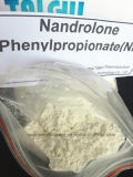 未加工ホルモンはDurabolin 62-90-8/Nandrolone Phenylpropionateを粉にする