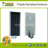 Cabeza ligera solar de Intergarted LED de la alta calidad