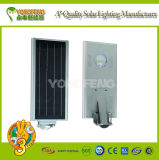 Qualität Intergarted Solar-LED heller Kopf