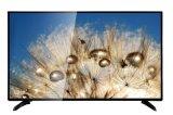 40 50 55 plein 1080P HD TFT LCD sec DEL 4K TV de couleur de pouce