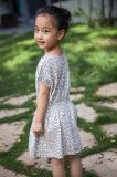 Vestidos 100% das meninas do algodão para o verão