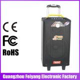 Feiyang/Temeisheng Draagbare Navulbare Spreker Bluetooth met 2 UHFMic--Qx-1014
