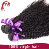Grad 7A Römer Curls brasilianisches Hair Wholesale Hair Weave Distributors