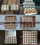 Pulpa de papel Bandeja cartón del huevo que hace la máquina
