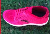 Le sport confortable de modèle neuf d'usine chausse des chaussures