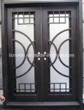 Saling最もよいアークの緑の反射ガラスが付いている上の錬鉄の前ドア