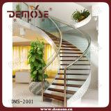 Scala di vetro d'acciaio dell'interno (DMS-2001)