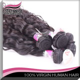De maagdelijke Uitbreiding van het Haar/het Braziliaanse Menselijke Haar van het Haar Weft/Remy