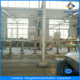 Synchronous Sanitary Inspection Device for Cattle Cow Beef Abattoir Plant