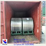 Kalziumsilikon entkernter Draht Dia13mm von China