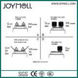 Sensor mecánico 0-10bar de la presión del carril del combustible del NPT
