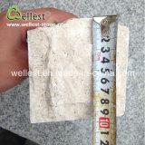 Pierre beige normale de champignon de couche de travertin de revêtement en gros de mur