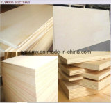 خشب رقائقيّ الصين [سوبّلير/] [18مّ] خشب رقائقيّ مع [لوو بريس]