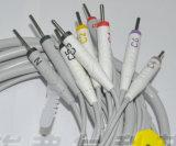 Cabo das ligações EKG do cabo 10 da guarnição 3 EKG da Philips