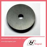 Het aangepaste Ferriet van de Ring van de Fabriek voor de Magneet van de Motor