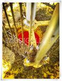 De zonne Aangedreven Lamp van de Moordenaar van de Mug voor Allerlei Insect in Tuin, Werf, Installatie