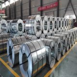 PPGI Prepainted стальная катушка/гальванизированная стальная катушка с картиной