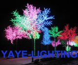 Yayeの上の低価格の最もよい品質の保証セリウム2年の及びRoHSの承認防水IP65 LEDの桜ライト