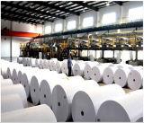 Color blanco de la garantía/del papel de impresión en offset para la venta