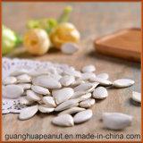 Семена тыквы снежка хорошего качества белые для сбывания