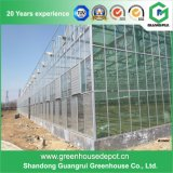 de moderne Serre van het Glas van het Type van Venlo van de multi-Spanwijdte van het Ontwerp voor het Planten