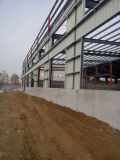 Het Project van de Workshop van de Structuur van het staal met Kraan van China