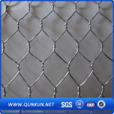Constructeur hexagonal de treillis métallique de qualité