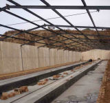 Casa de pollo material industrial de la vertiente de la granja avícola del diseño de la estructura de acero