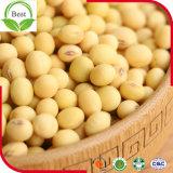 非低価格GMOの大豆