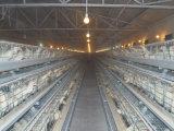 тип цыплятина цыпленка цены & качества большой конструкции рамки хорошая автоматическая арретирует для реактор-размножитела