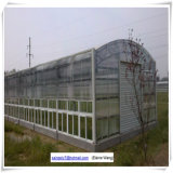 Serre di alluminio usate del giardino