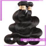 Волосы оптовой естественной девственницы цены по прейскуранту завода-изготовителя индийские для дешево