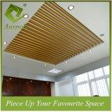 Dekoration-runde Gefäß-Profil-Aluminiumdecke Durchmesser-50mm für Konferenzzimmer