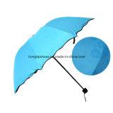 雨花のビニールの傘