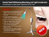 Dentes leves frescos que Whitening o acelerador