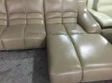 Grande curva contemporanea L sofà dell'ufficio di figura