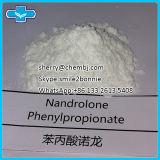 熱い販売の未加工同化ステロイドホルモンの粉のNandrolone Phenylpropionate