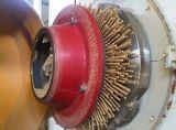 Pallina di legno della biomassa di capacità elevata che fa macchina