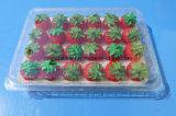 Contenitore impaccante impaccante di bolla delle coperture superiori del contenitore della frutta di plastica per la fragola approvato dalla FDA 500 grammi