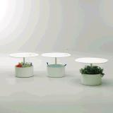 Uispairの現代100%鋼鉄円形のオフィスのホーム生きている食堂の寝室のコーヒーテーブル