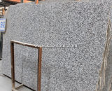 Grosses White Flower/Grey Granite Kitchen Countertop für Building Decoration Material