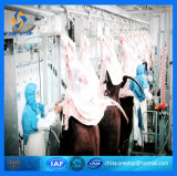 生産Line Slaughter House Abattoir MachineryかHalal Goat Equipment Abattoir Process Line