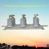 400A 3 interruptor de desconexión de interior del alto voltaje de la fase 10kv (GN19-12/400-12.5)