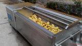 Lavadora vegetal de la fruta del lavado y de la peladura del cepillo